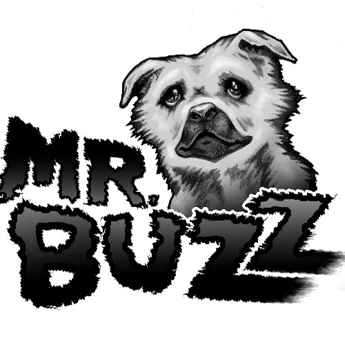 Mr. Buzz logo